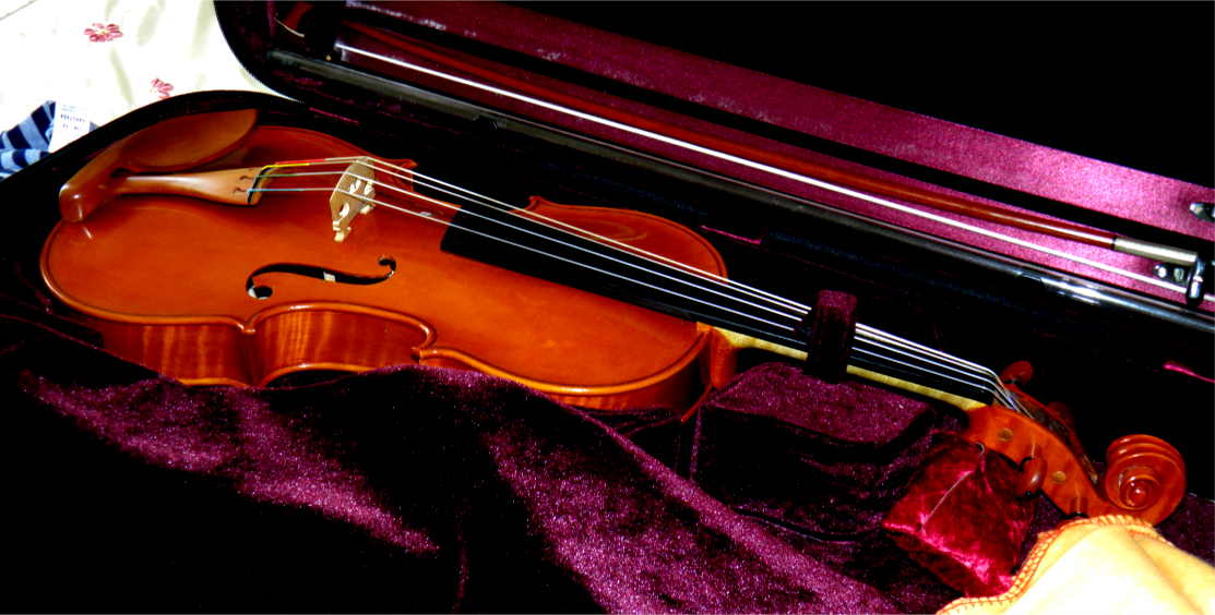 Rudolf Pilsel Hand crafted Violin